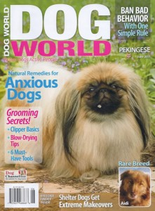 Natural Cures For Dogs With Anxiety